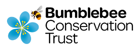 Bumblebee-Conservation-Trust.png