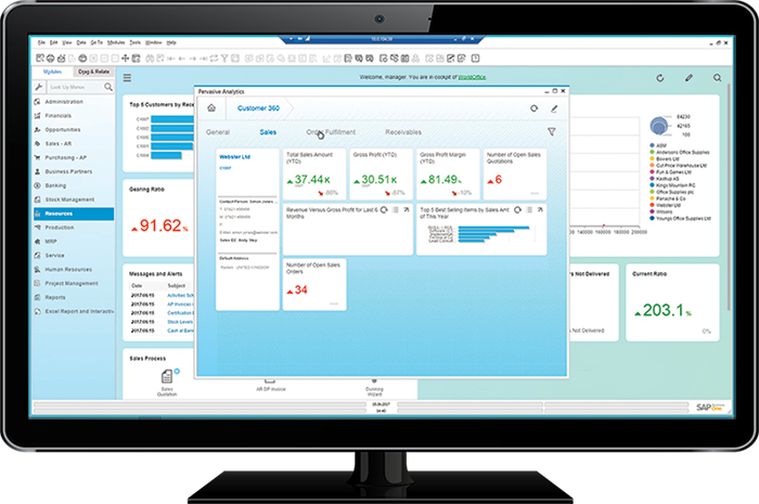 SAP-Business-One-Monitor-Screenshot-1.png